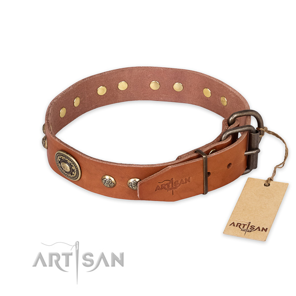 Rust-proof hardware on full grain natural leather collar for daily walking your pet