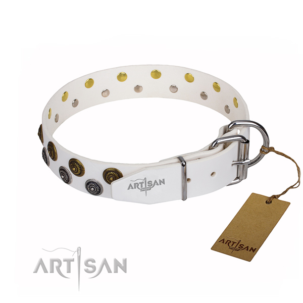 Stylish walking adorned dog collar of top quality full grain leather