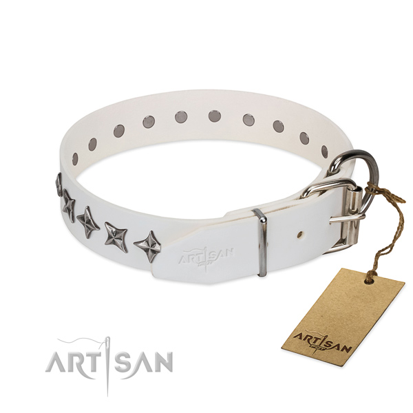 Top quality full grain natural leather dog collar with incredible embellishments