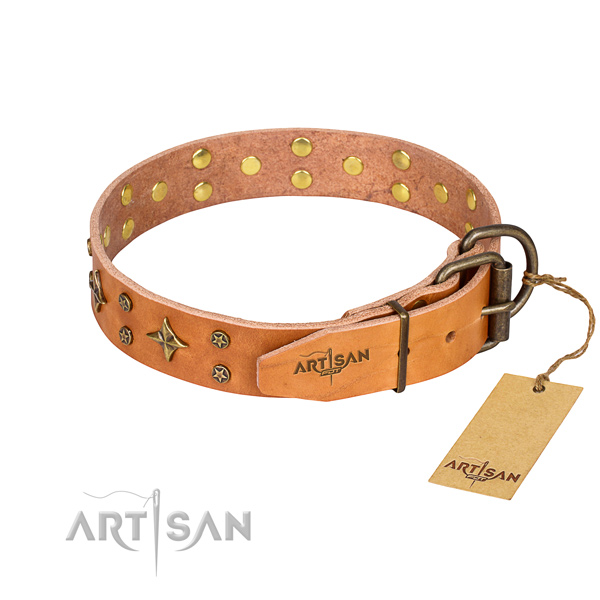 Basic training embellished dog collar of quality full grain natural leather