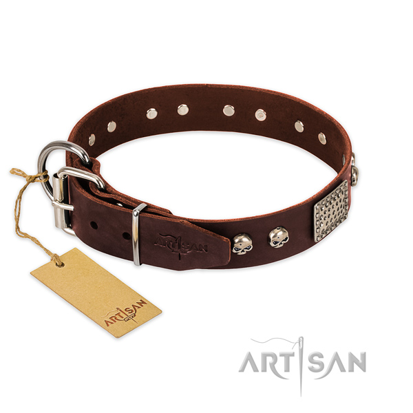 Rust resistant traditional buckle on comfy wearing dog collar