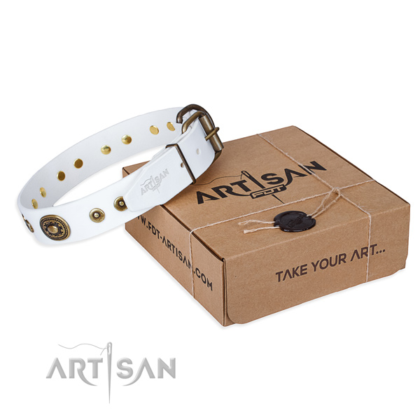 Full grain natural leather dog collar made of soft material with rust-proof fittings