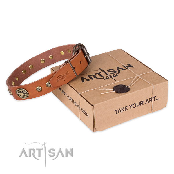 Rust resistant D-ring on full grain leather dog collar for basic training