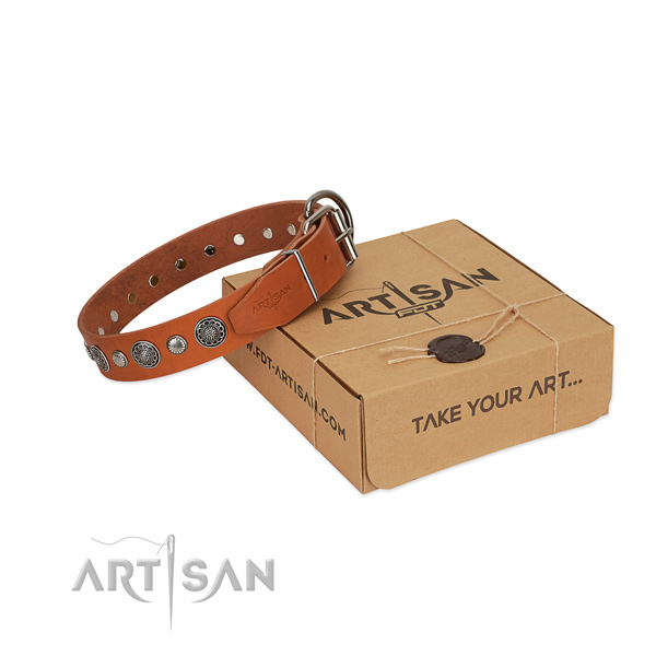 Leather collar with reliable hardware for your handsome doggie