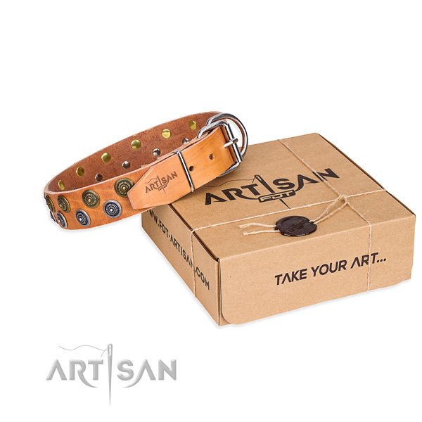 Everyday walking dog collar of reliable full grain genuine leather with studs