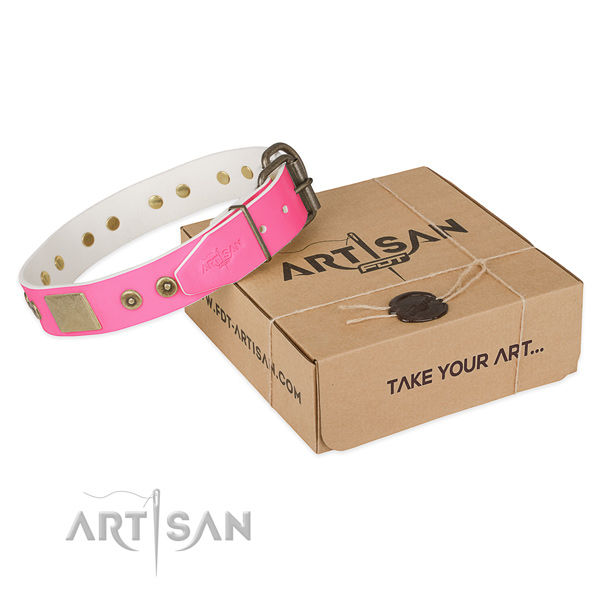 Durable adornments on dog collar for walking