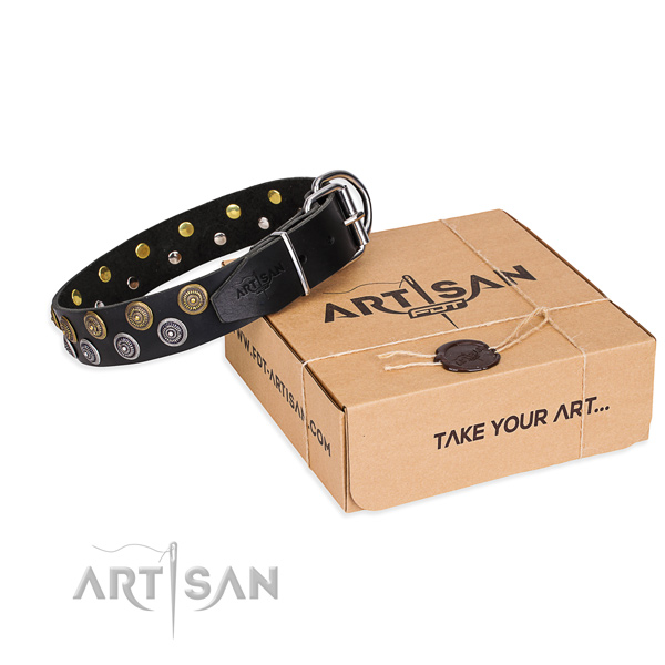 Daily use dog collar of finest quality full grain genuine leather with adornments
