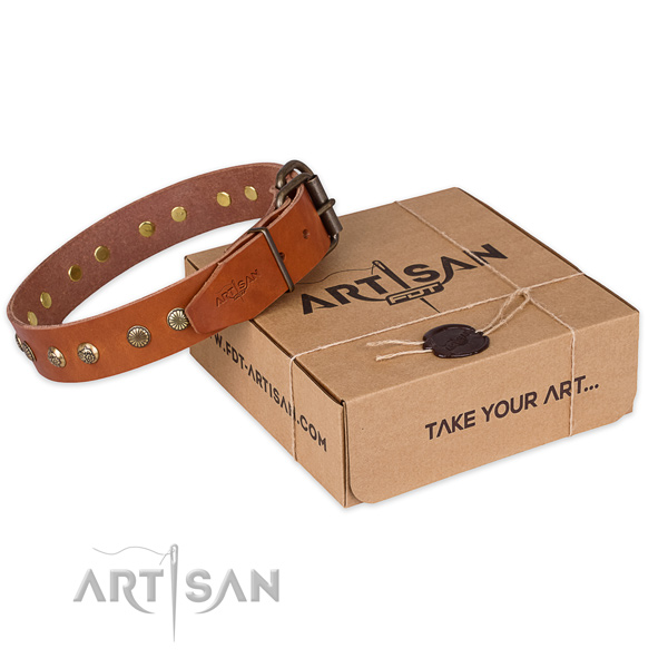Corrosion resistant hardware on leather collar for your lovely canine