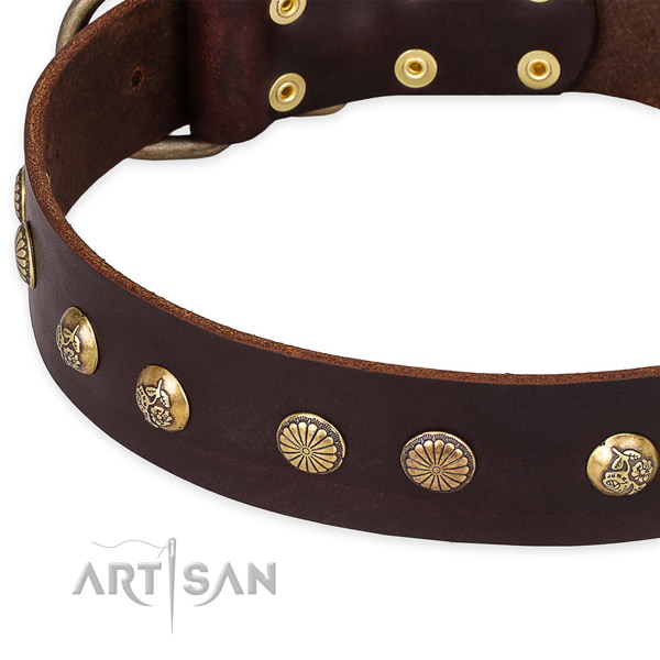 Full grain natural leather collar with durable traditional buckle for your beautiful dog