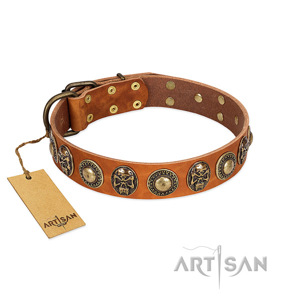 Easy to adjust full grain natural leather dog collar for stylish walking your four-legged friend
