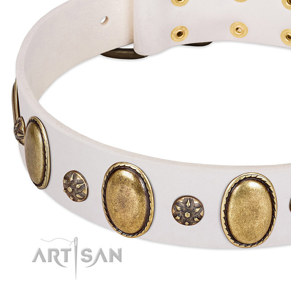 Easy wearing best quality full grain natural leather dog collar with studs