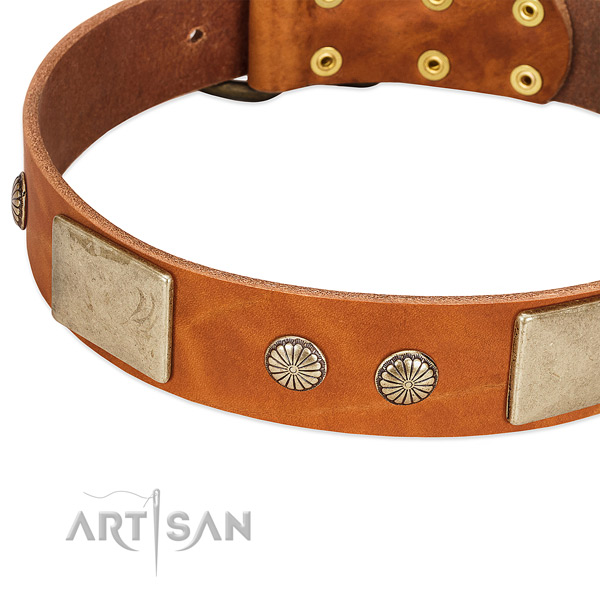 Rust-proof embellishments on full grain genuine leather dog collar for your dog