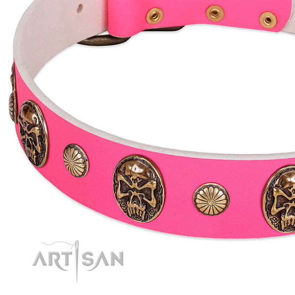 Rust resistant decorations on leather dog collar for your canine
