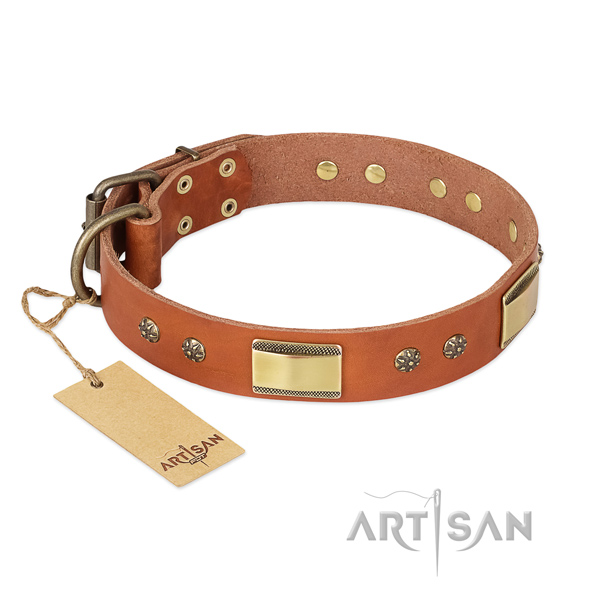 Easy wearing full grain leather collar for your pet