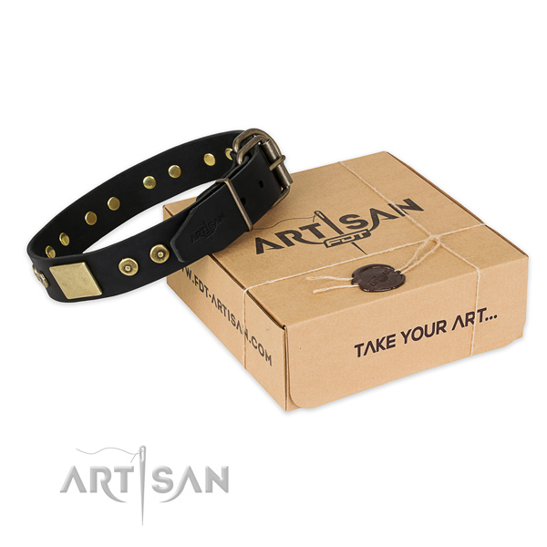 Rust-proof hardware on genuine leather dog collar for comfortable wearing