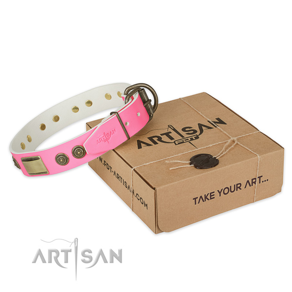 Durable fittings on dog collar for daily use