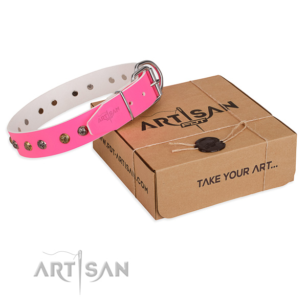 Stylish walking dog collar with Remarkable corrosion resistant studs