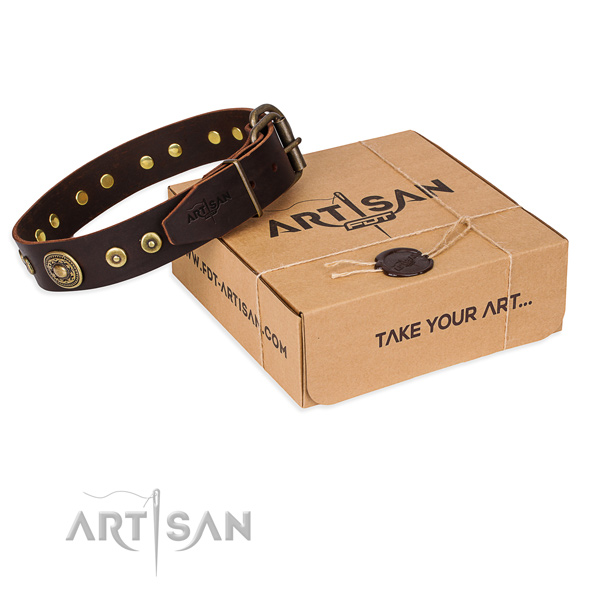 Full grain natural leather dog collar made of soft material with strong traditional buckle