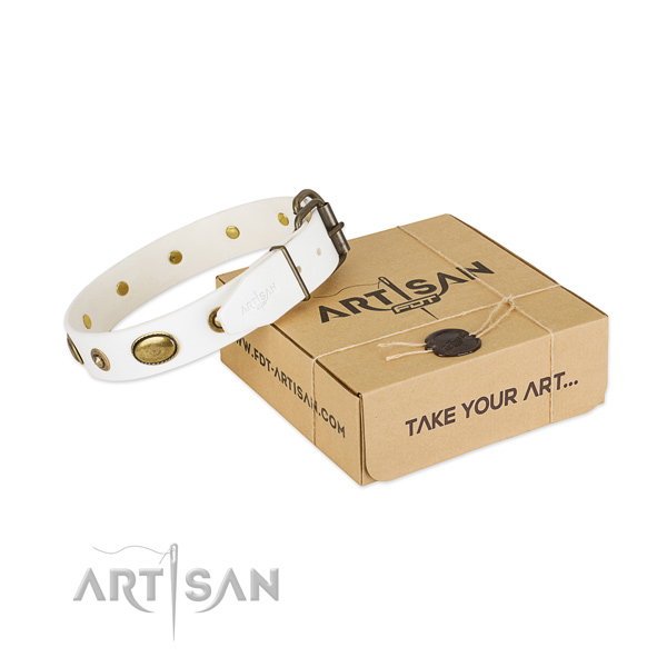Exceptional full grain genuine leather collar for your attractive four-legged friend