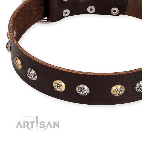 Genuine leather dog collar with unique rust resistant adornments