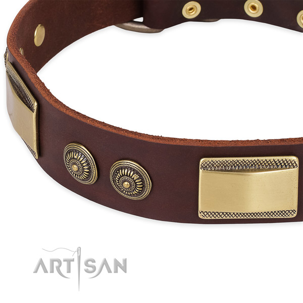 Significant leather collar for your handsome pet