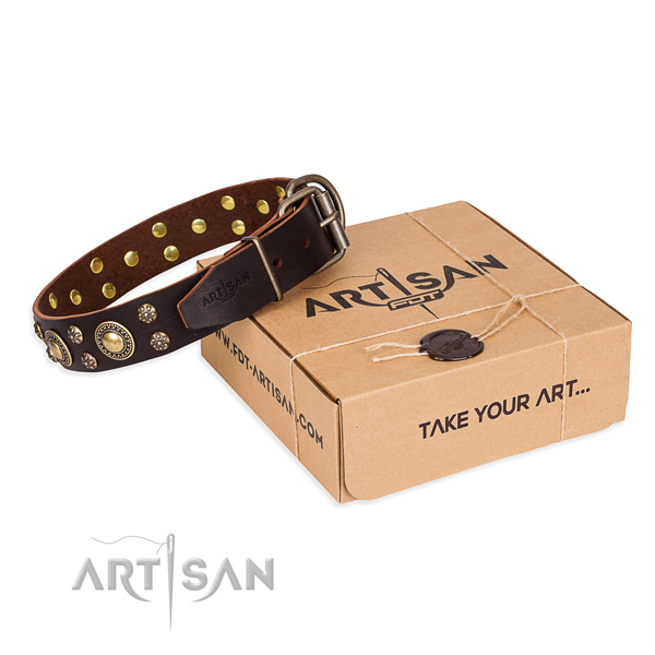 Daily use dog collar of best quality full grain genuine leather with embellishments