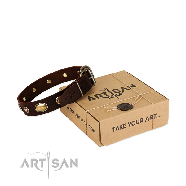 Corrosion proof hardware on natural leather dog collar for your pet