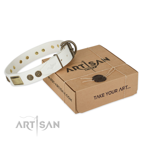 Rust resistant traditional buckle on genuine leather dog collar for handy use