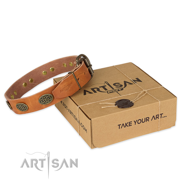 Corrosion resistant traditional buckle on full grain natural leather collar for your beautiful pet