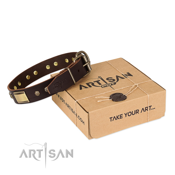 Studded full grain natural leather collar for your attractive pet