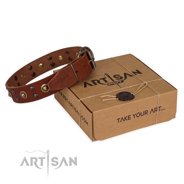 Corrosion resistant buckle on genuine leather collar for your lovely four-legged friend