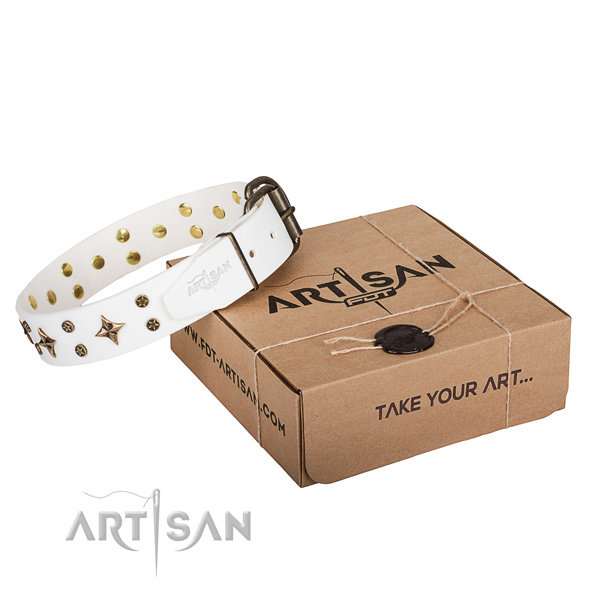 Handy use dog collar of top notch full grain natural leather with studs