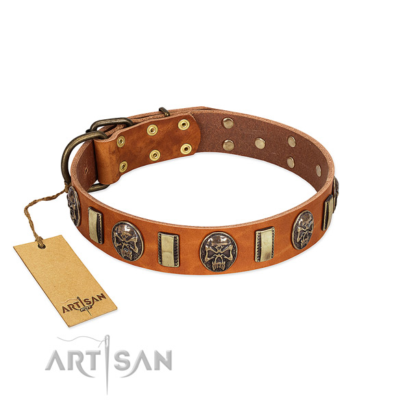 Incredible full grain natural leather dog collar for comfortable wearing