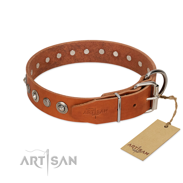 Top quality full grain genuine leather dog collar with extraordinary embellishments