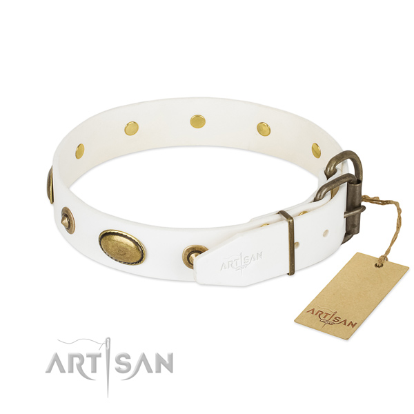Rust resistant fittings on natural leather dog collar for your canine