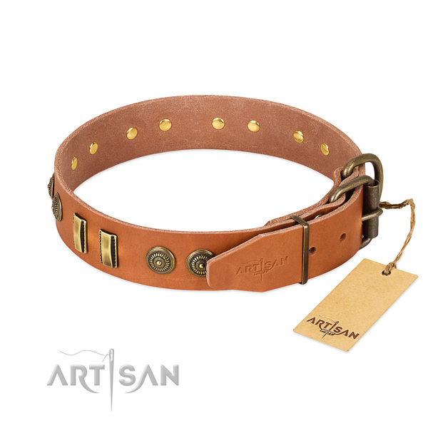 Rust resistant buckle on leather dog collar for your canine