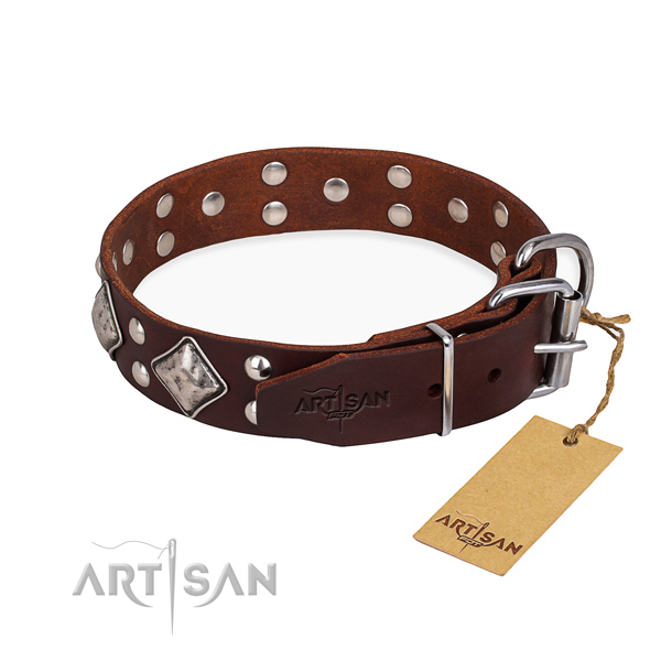 Natural leather dog collar with trendy strong studs