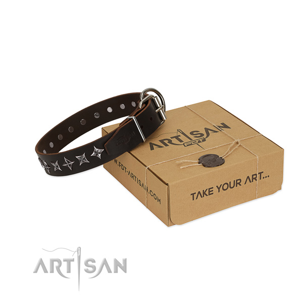 Everyday walking dog collar of fine quality natural leather with studs