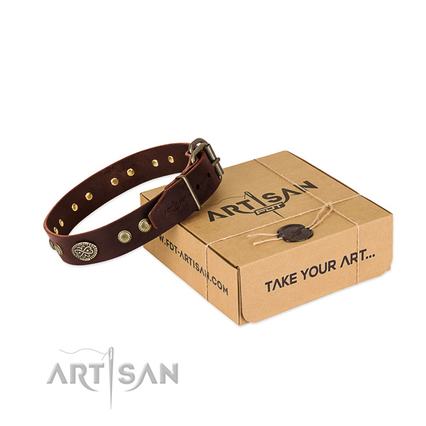 Corrosion proof adornments on leather dog collar for your doggie