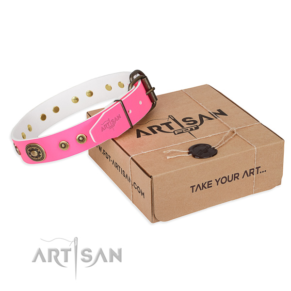 Full grain leather dog collar made of top rate material with rust resistant fittings