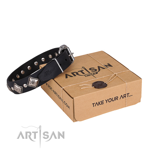 Basic training dog collar of quality full grain genuine leather with embellishments