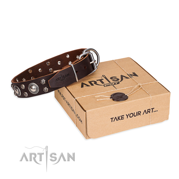 Everyday use dog collar of fine quality natural leather with studs