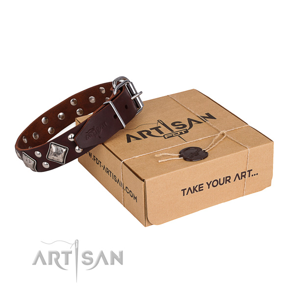 Daily walking dog collar with Inimitable rust-proof adornments