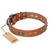 """Stunning Dress"" FDT Artisan Tan Leather Golden Retriever Collar with Old Bronze Look Plates and Studs"