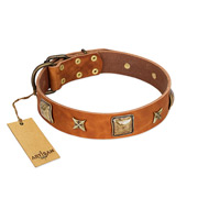 """Celtic Tunes"" FDT Artisan Tan Leather Golden Retriever Collar Adorned with Stars and Squares"