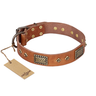 """Catchy Look"" FDT Artisan Decorated Tan Leather Golden Retriever Collar"