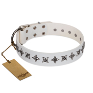 """Midnight Stars"" FDT Artisan Fashionable Leather Golden Retriever Collar with Old Silver-like Plated Decorations"