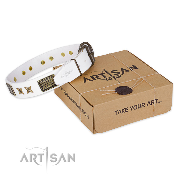 Durable buckle on genuine leather collar for your attractive canine