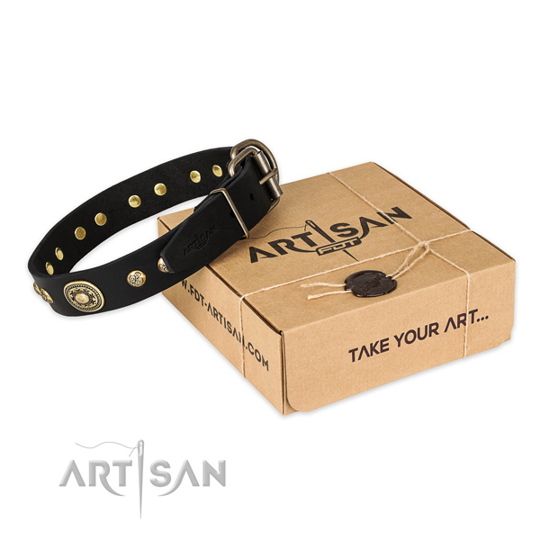 Rust resistant hardware on full grain genuine leather dog collar for fancy walking