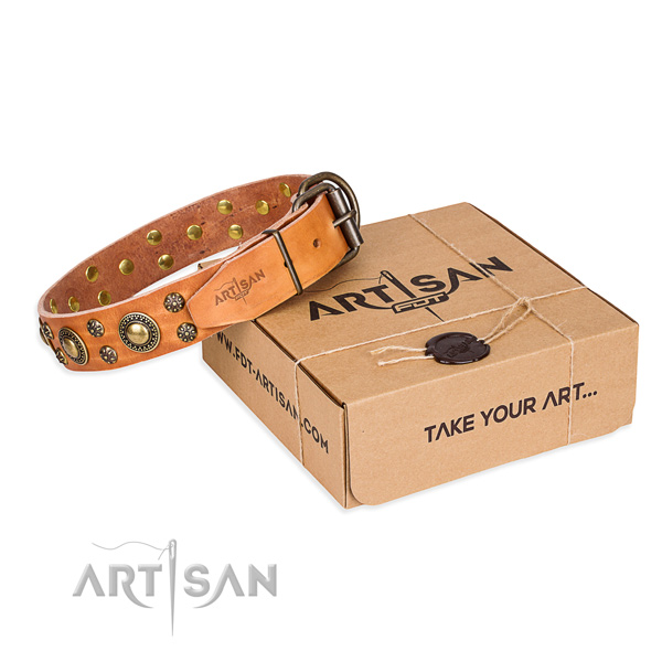 Daily use dog collar of best quality natural leather with decorations